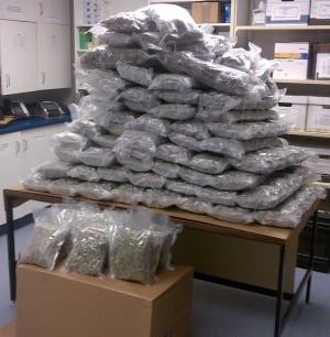 Steinbach marijuana seizure