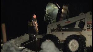 farm animals found dead near winterland police