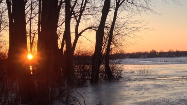 A park on the banks of Rivière des Prairies in Ste-Dorothée, Que., flooded. Water came up high enough to freeze around several trees.
