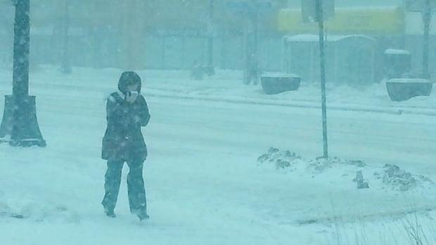 A woman walks on Portage Avenue on Wednesday, as snow swirls around her.