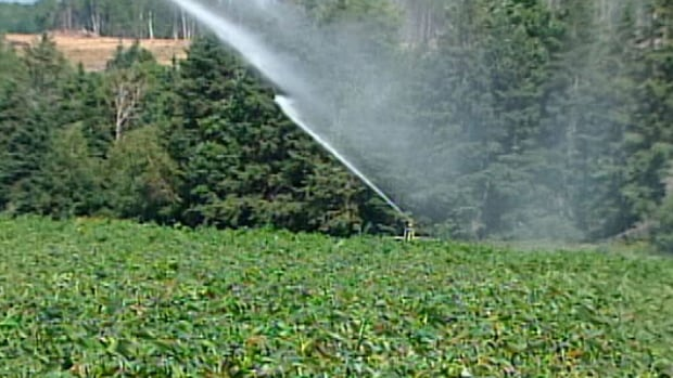 The potato industry would like to see a moratorium on deep-water irrigation systems lifted.