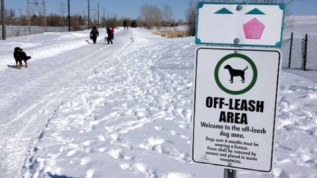 Kilcona Park Dog Club president Donna Henry said members have voted to ask the city for a splash pad for dogs, which they would help fundraise for.
