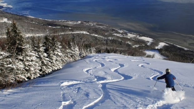 A volunteer ski guide at le Massif de Charlevoix, in La Petite-Rivière-Saint-François, died after search and rescue teams found him with severe injuries.