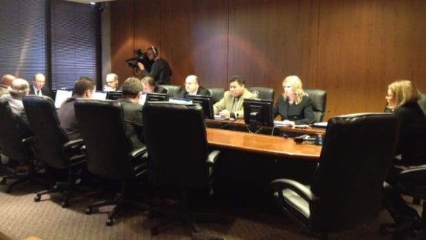 Coun. Paula Havixbeck addresses the city's executive policy committee on Wednesday.