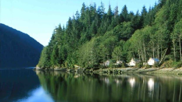Rod Taylor, the CEO of the company behind the proposed eco-lodge at Millhaven Bay, says the resort will be modelled after the world famous Clayoquot Resort on Vancouver Island, pictured here.