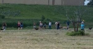 skpic off-leash dog park