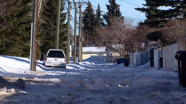 A Siberian husky and kitten were found dead with their mouths taped shut in this Calgary alley.