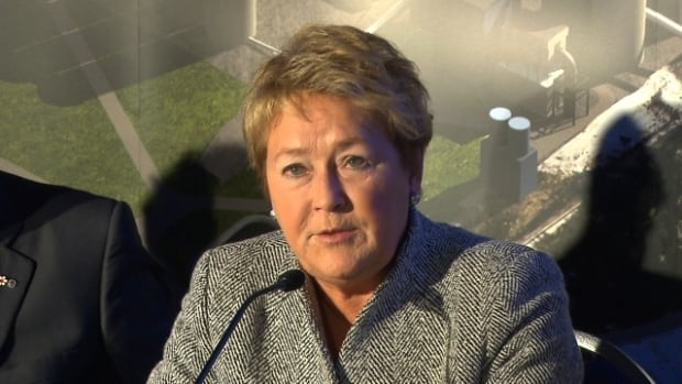 Quebec Premier Pauline Marois announces her government's plan to invest in a cement plant in Port-Daniel-Gascons in the Gaspé.
