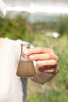 erlenmeyer flask water sample 147912113