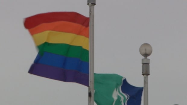 Mayor Jim Watson announced that the Pride flag will fly at Ottawa's City Hall for the duration of the Sochi Olympics.