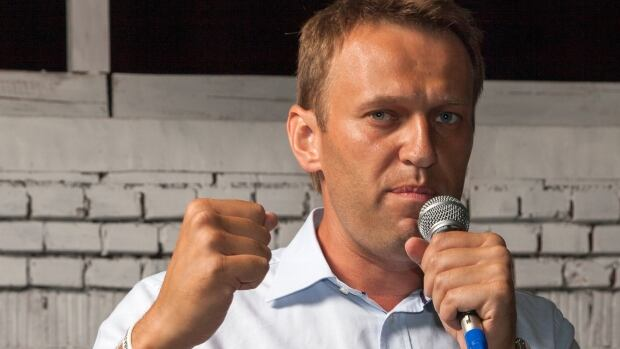 "Alexei Navalny, a Russian lawyer, political and financial activist, politician and anti-corruption blogger, calls the Olympic games a ""monument to embezzlement."""