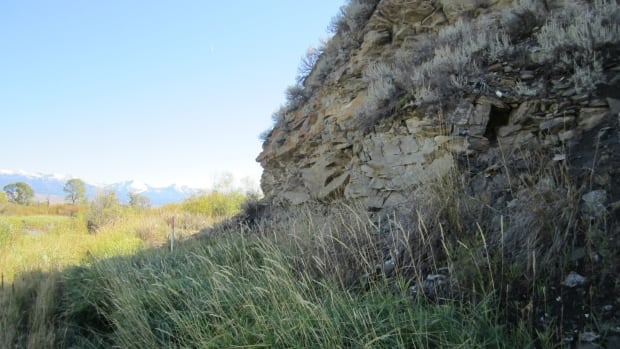 The site in Montana where the artifacts and the toddler's 12,600 year old skeleton were found.