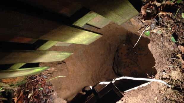 A woman was rescued unharmed after falling into a six-metre-deep sinkhole that opened up in her backyard on Tuesday night.