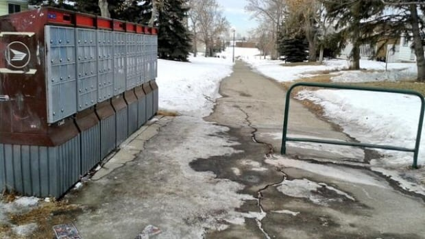 Canada Post is responsible for clearing the area directly around community boxes, but those losing home delivery service still say they worry about an icy trip to get their mail during the winter.