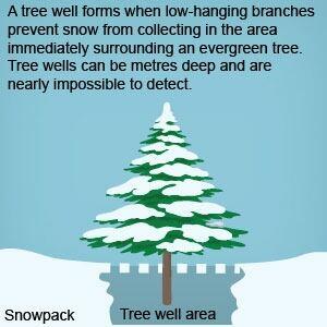 si-tree-well300.jpg