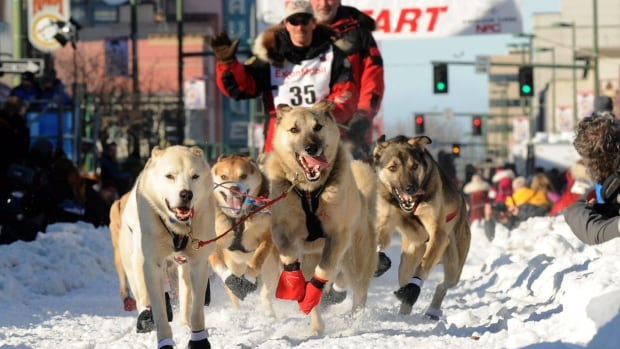 Paul Gebhardt, of Kasilof, Alaska, leaves the start line during the ceremonial beginning of the Iditarod Trail Sled Dog Race in Anchorage, Alaska.
