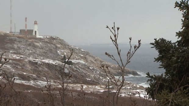 For decades, Chebucto Head Road has led sightseers to the lighthouse and some of the best views in the Halifax Regional Municipality. Neighbours, however, say the road is dangerous to drive on.