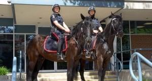 Waterloo Regional Police Horseback