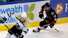 AHL Penguins Senators Hockey