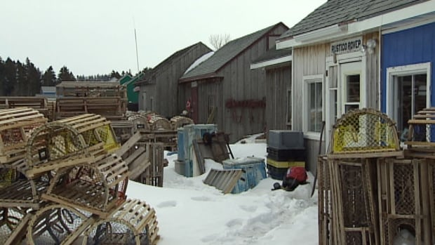 These fishing shanties will be painted in bright colours as part of a tourism revitalization project in North Rustico.