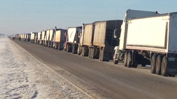 Dozens of trucks were lined up at Watson, Sask., on Wednesday. After a bumper crop last fall, farmers have been having a hard time finding grain cars to ship their product.