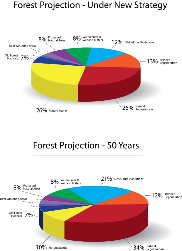 nb-forestry-projections-piecharts