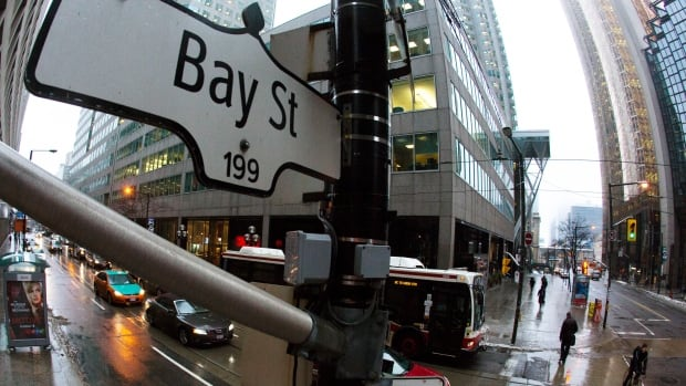 Many assume that anyone who works on Bay Street or in the business world generally hates taxes, but CBC's Don Pittis found that many business people recognize that taxes pay for the infrastructure and services that help keep the economy running smoothly.
