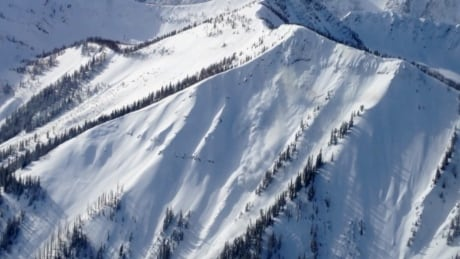 Avalanches in B.C. mountains and Alberta Rockies - stock
