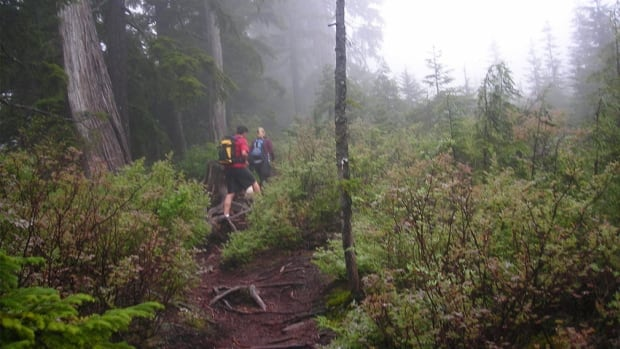 The women were hiking on trails like these near Coquitlam's Buntzen Lake when they got lost and called for help.
