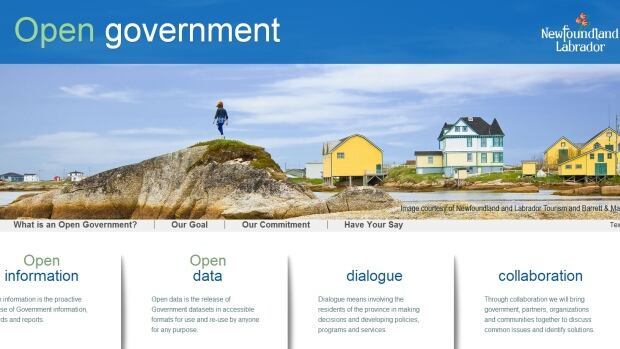 The Newfoundland and Labrador government has launched a new website to provide more information to the public.