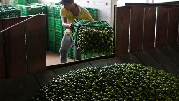 A worker unloads limes at a packing plant in La Ruana, in the state of Michoacan, Mexico. North American bars are facing rising prices for the citrus fruit.