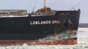 lowlands-opal-cargo