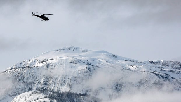 A file photo from 2010 shows a search and rescue helicopter heading toward a deadly avalanche site near Revelstoke, B.C.