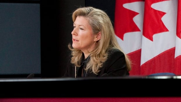 Interim privacy commissioner Chantal Bernier has released a report on the loss of a hard drive containing loan data for more than half a million students.