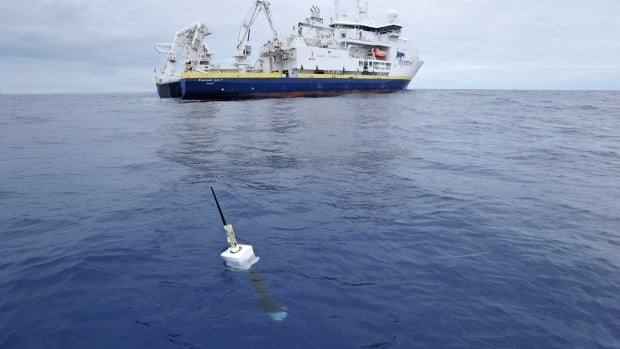 Argo consists of around 3,600 floats or robots distributed around the world's oceans.