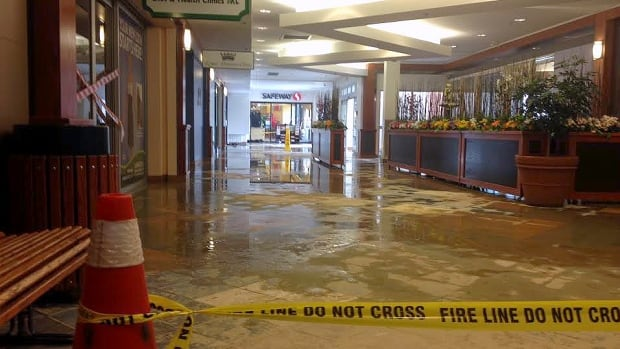 A water main break early Sunday morning at Brentwood Village Mall caused significant amounts of water to flood the mall.