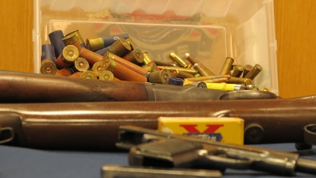 Hamilton Police Service collected 374 firearms and 20,000 rounds of ammunition in an amnesty program last year. Coun. Matthew Green wants to do another amnesty program but add a financial incentive.