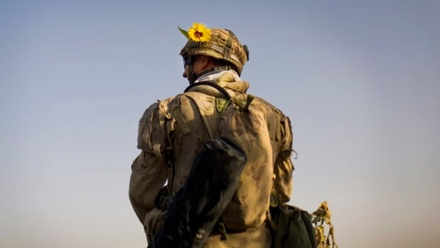 A Canadian soldier is seen on patrol southwest of Kandahar, Afghanistan, with a sunflower stuck to his helmet in this 2010 file image.