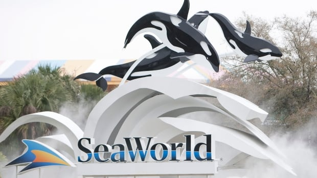 Forty-six guests and several SeaWorld became stranded on the vertical Skytower ride for hours Sunday after a power failure left them dangling 60 metres in the air.
