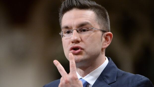 "Minister of State (Democratic Reform) Pierre Poilievre told a Senate committee he is ""convinced"" the bill is ""constitutionally compliant."""