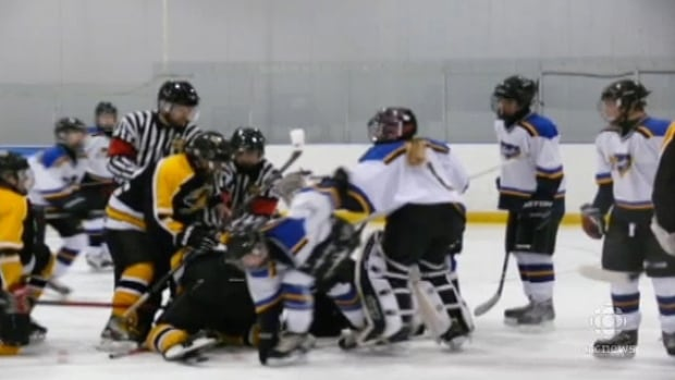 A March 30 hockey game between the Stonewall Blues and a team from the Lake Manitoba First Nation erupted in fights on and off the ice.