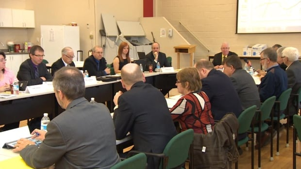 The province's English school board voted in favour of multiple motions on Saturday that would see some reorganization to schools in Mount Pearl and Goulds.