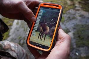 Elk call app
