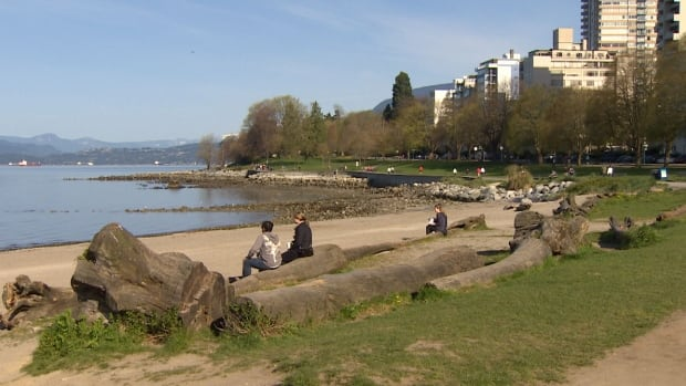 Vancouver Park Board Commissioner Trevor Loke says people should be able to access their mobile devices everywhere in the city, even by the beach.