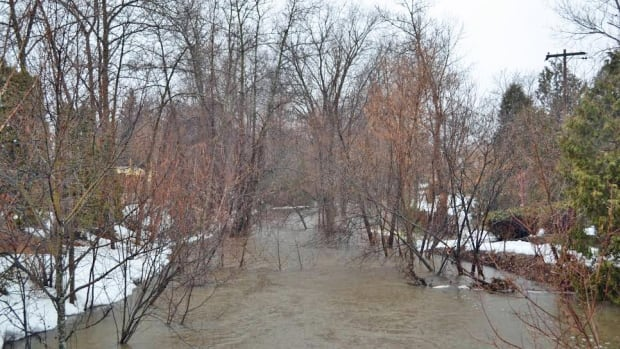 Water levels in the Greater Sudbury area are continuing to rise and low lying areas are especially vulnerable right now, an official with the  Nickel District Conservation Authority says.