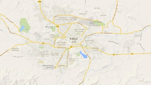 Ahmad Shah Wahid, Afghanistan's deputy public works minister, was abducted by gunmen from his car in Kabul on Tuesday.