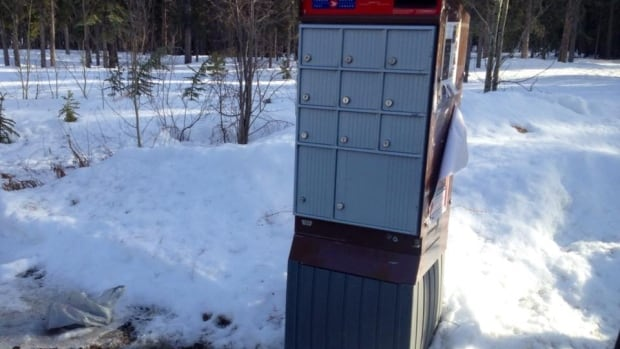 Shanti Morrison was checking her mail on Carcross Road when she noticed a discarded sack in the snow. Inside were two dead puppies, and police say there's nothing they can do.