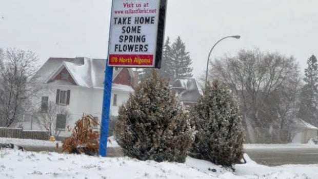 Spring flowers were nowhere in sight on April 17 in Thunder Bay. A total of 15 cm of the cold, wet stuff was expected going into Good Friday.
