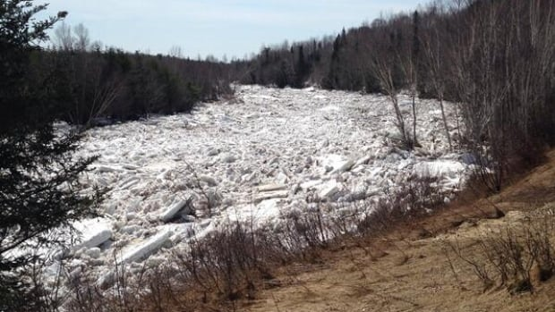 Ice jams in New Brunswick's river systems could still cause flooding.