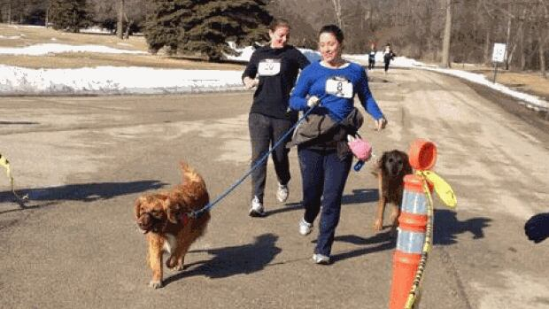 Mutts and their humans ran 5 K through St. Vital Park for Manitoba Mutts Dog Rescue Saturday morning.